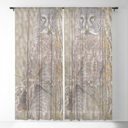 Camouflage Sheer Curtain