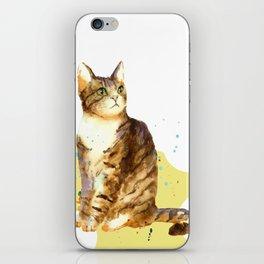 Cute Tabby Cat iPhone Skin