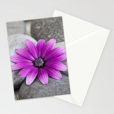 Zen Pink Daisy Pebble Still Life Stationery Cards