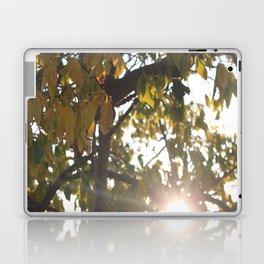 Peaking Through Leaves Laptop & iPad Skin