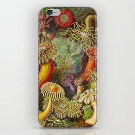 Vintage Sealife Underwater iPhone Skin