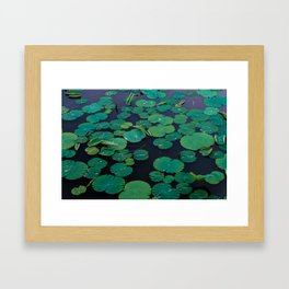 Temple Lilypond Framed Art Print