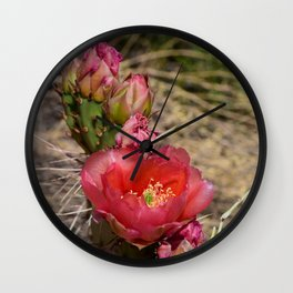 Cacti in Bloom - 4 Wall Clock