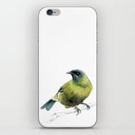 Korimako, the Bellbird iPhone Skin