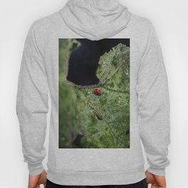 Beyond the void Hoody