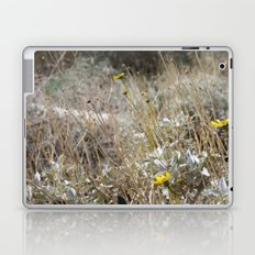 Rarity 2 Laptop & iPad Skin