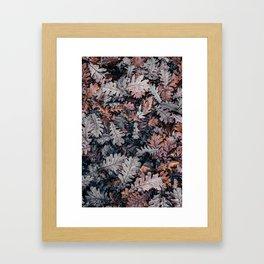 Dead Leaves Framed Art Print