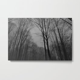 Dark Forest Metal Print