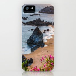 Rocky Oregon Coast iPhone Case