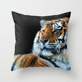 Sumatran Tiger - Panthera Tigris Sumatrae Throw Pillow