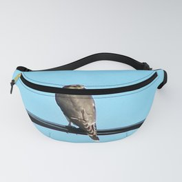 Bird on a Wire Fanny Pack