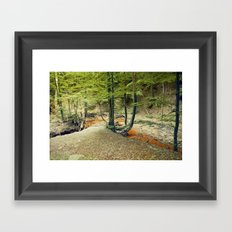 Woodland Promenade Framed Art Print