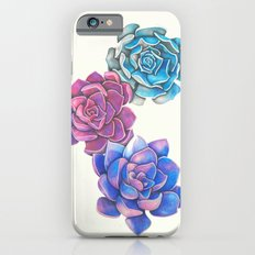 Vibrant Succulents  iPhone 6s Slim Case