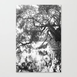 Oaks On the Water Canvas Print