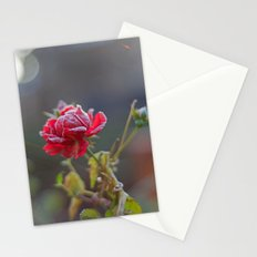 Rose in the frost Stationery Cards