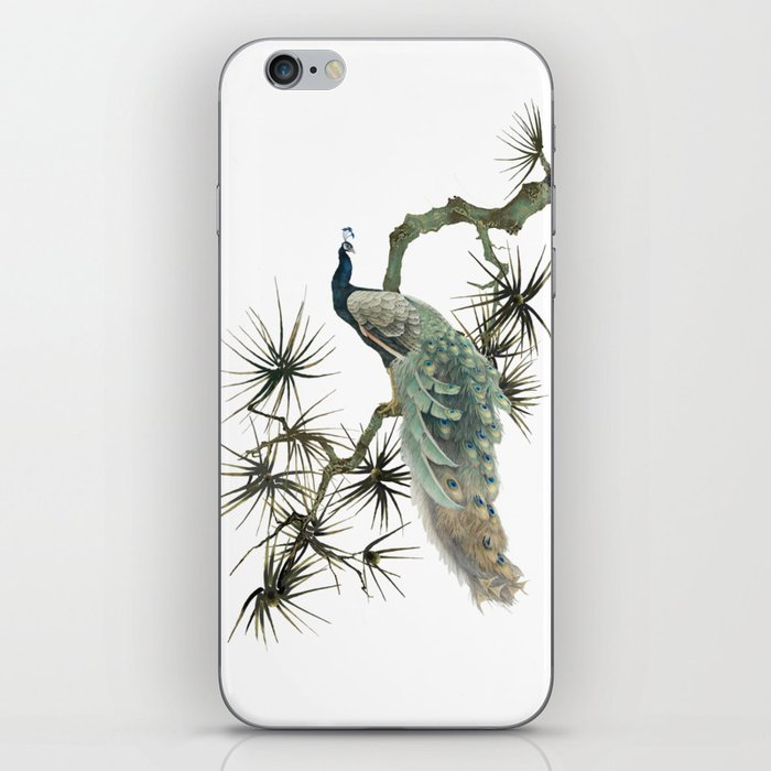 Turquoise Peacock iPhone Skin