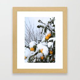 Lemon Snow Framed Art Print
