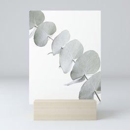 EUCALYPTUS WHITE 3 Mini Art Print