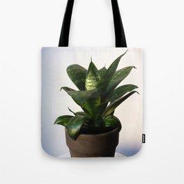 Sansevieria Tote Bag