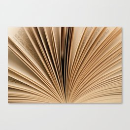 Book Fan Canvas Print