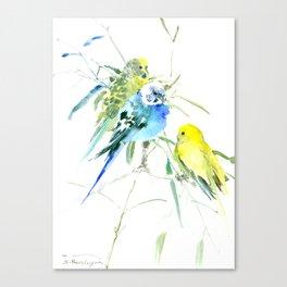 Parakeets green yellow blue bird decor Canvas Print