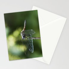Fly, Dragon, Fly Stationery Cards