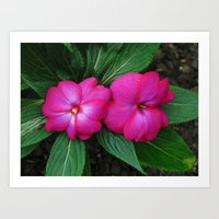 hot pink Art Prints featuring Hot Hot Pink by Nevermind the Camera