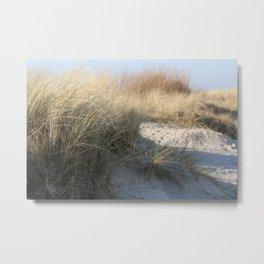 Wild Landscapes at the coast 3 Metal Print