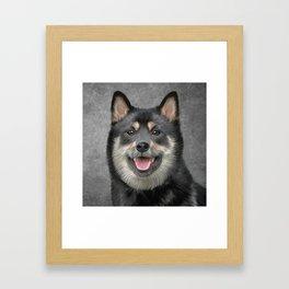 Drawing Japanese Shiba Inu dog Framed Art Print
