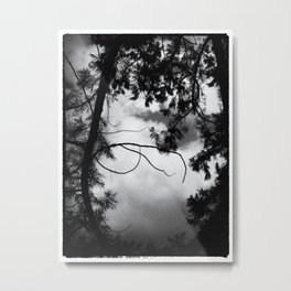 Tree dance Metal Print