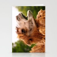camel Stationery Cards featuring Camel by GardenGnomePhotography