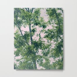 Spring Tree Branches Metal Print