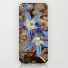 Stubborn Beauty iPhone 6s Slim Case