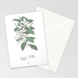 Natal Plum Stationery Cards
