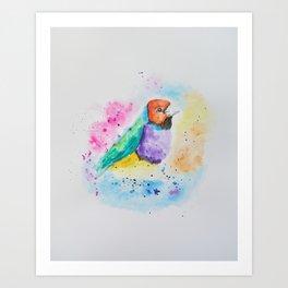 Gouldian Finch Watercolor Art Print