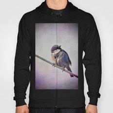 A New York City Sparrow Hoody