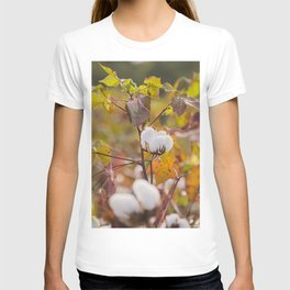 Cotton Flower 3 T-shirt