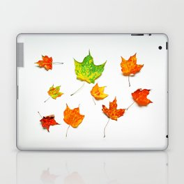Autumn Leaves on White in Red Orange Yellow and Green Laptop & iPad Skin