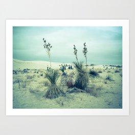 White Sands, New Mexico - WSNM01 Art Print
