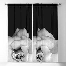 Rose Monochrome Blackout Curtain