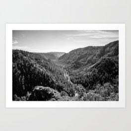 Black & White Arizona Art Print