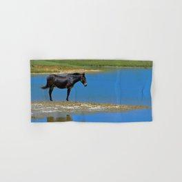 Black Horse. Animal. Pennsylvania Hand & Bath Towel
