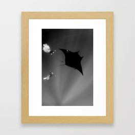 Manta and Divers Framed Art Print