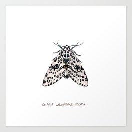 Giant Leoprd Moth Art Print