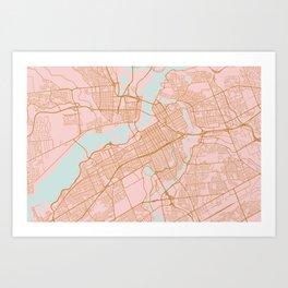 Pink and gold Ottawa map Art Print