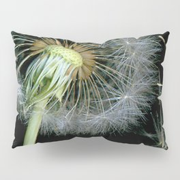 Dandelion Seeds Blowing in the Wind, Scanography Pillow Sham