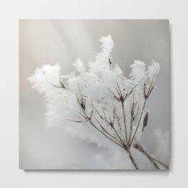 Winter macro Metal Print
