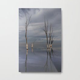 Dry trees submerged in the lake. Metal Print