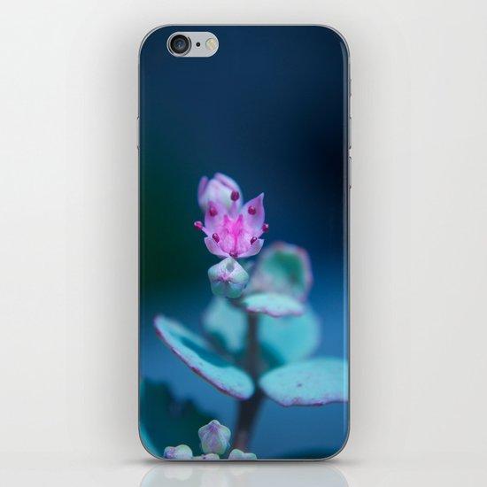 Trial iPhone & iPod Skin