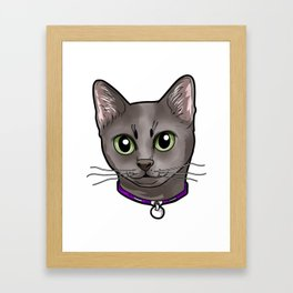 Korat Cat Cats Face Love Cute Sweet Kitty Present Framed Art Print